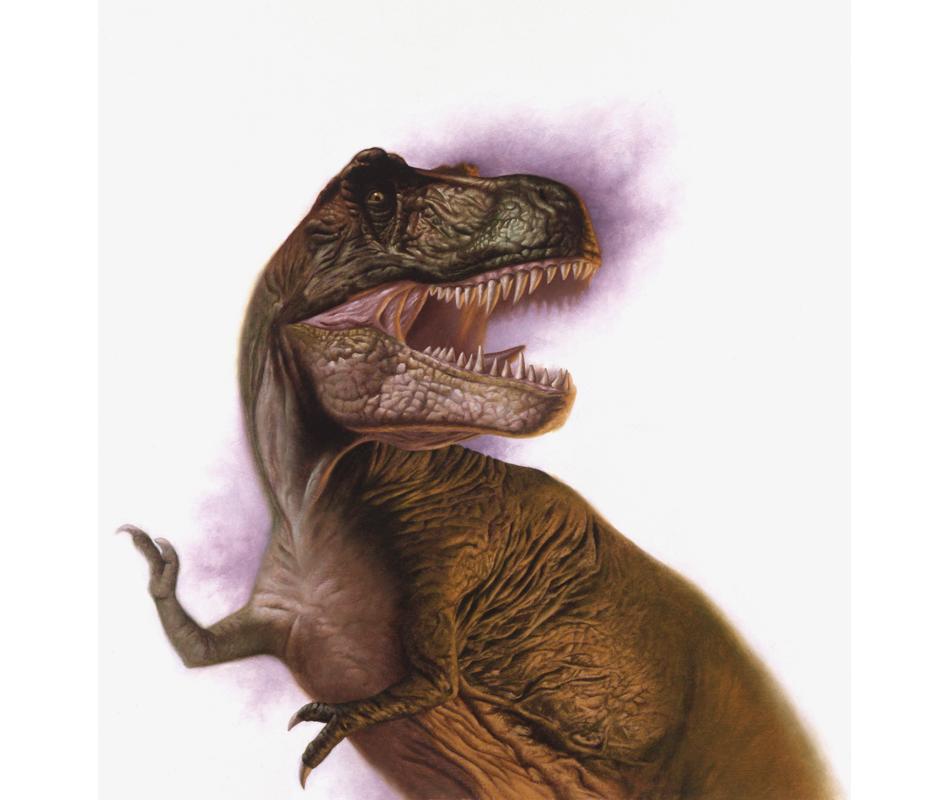 Dinofest